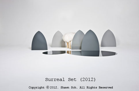 Surreal Set(2012) - installation work