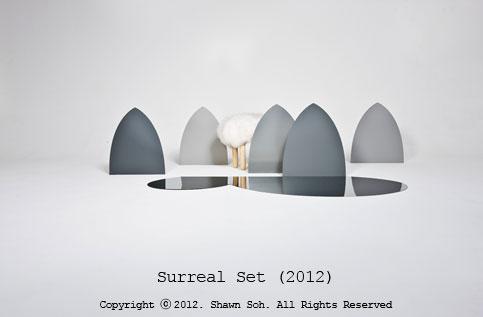 Surreal Set(2012) - installation work